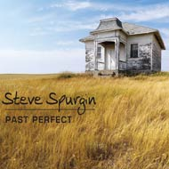 Past Perfect| STEVE SPURGIN