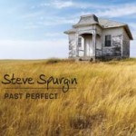 Past Perfect by Steve Spurgin
